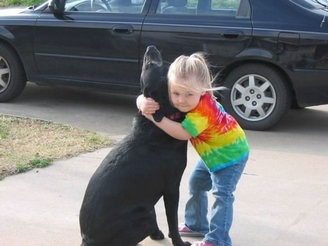 Child hugging Lab