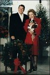 President Reagan with Cavalier King Charles Spaniel, Rex
